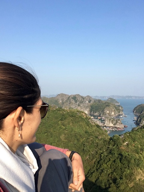 View from the top, Cat Ba